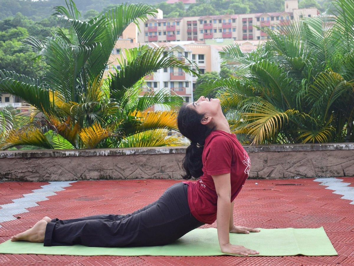 Yoga Day Celebrations Image 3