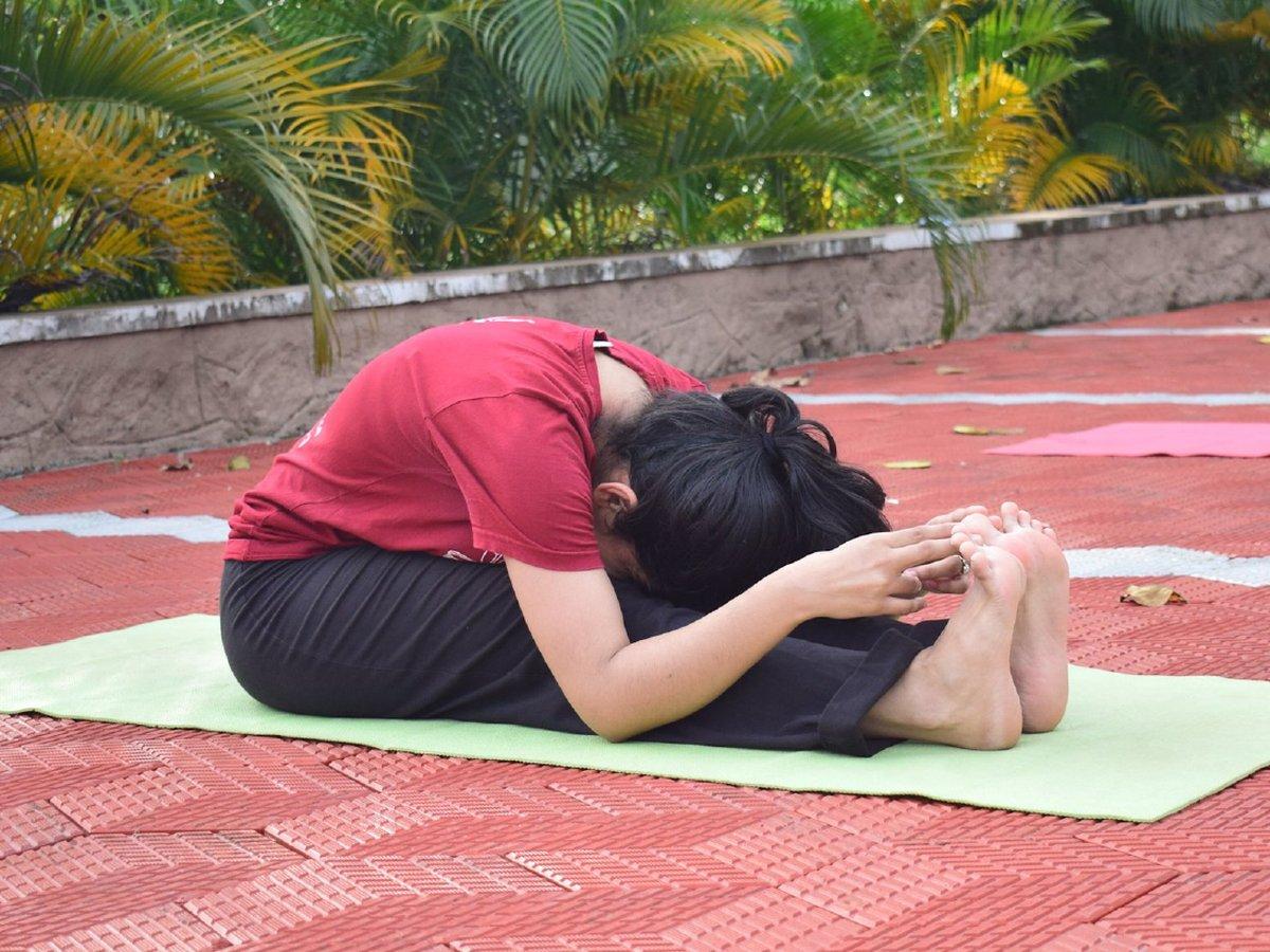 Yoga Day Celebrations Image 4