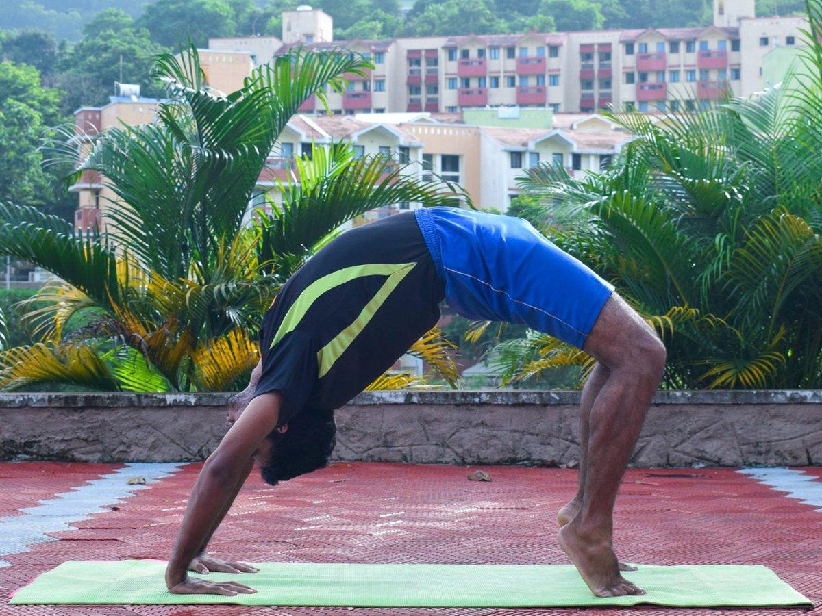 Yoga Day Celebrations Image 8